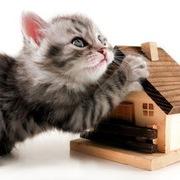 Помогу с продажей Вашей недвижимости.