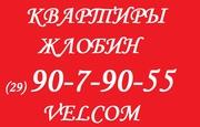 квартира на сутки в Жлобине (эконом-класс)