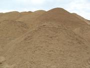 Организация закупает песок.
